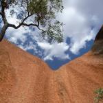 エアーズロック(Ayers Rock)ウルル滞在2日目、走行距離415km