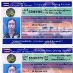 観光ビザで5年間の運転免許証に更新できた事例 @タイ2015