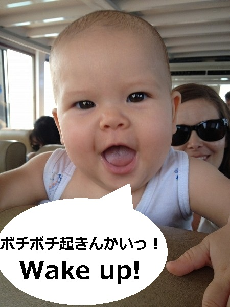 IMG_3980_1.jpg