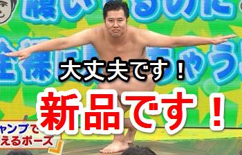 daijyoubudesu1.png