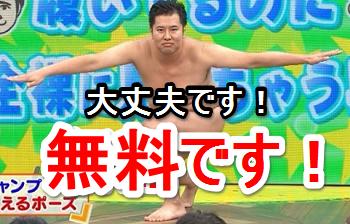 daijyoubudesu3.png