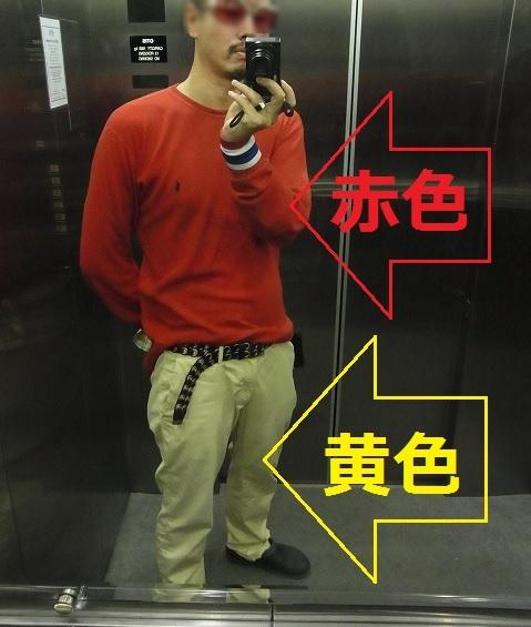 kamereon1.jpg
