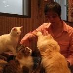 バンコクの猫カフェ(Chico)に初めて行ってみたが。。。in タイ