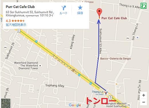thonglomappurrcatcafeclub.png