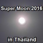 2016年バンコクから見る68年ぶりのスーパームーン in タイ